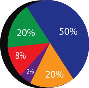 Pie Chart Shows Percentages