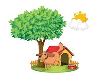 A Doghouse