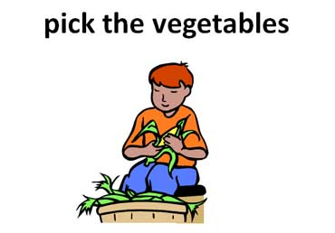 Pick the Vegetables