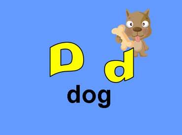 D d - Dog