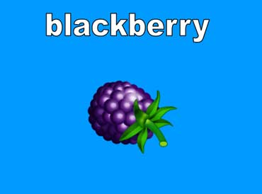 Blackberries Are Black or Dark Purple