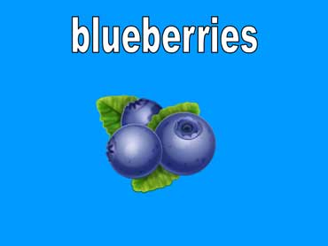 Blueberries Are Indigo Blue