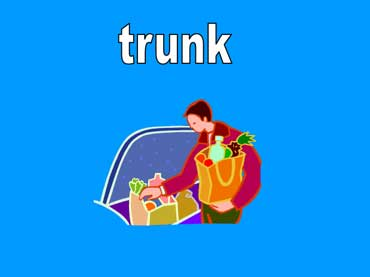 Man Putting Groceries in the Trunk of His Car