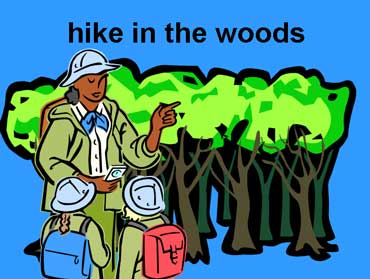 Hike in the Woods