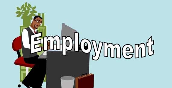 Employment Lesson Banner