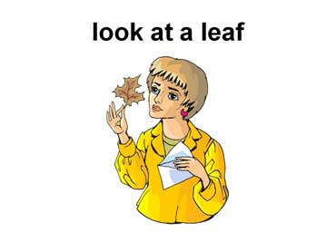 Woman Looking at a Leaf
