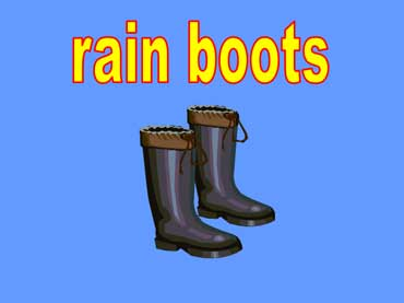 Rain Boots - Rubber Boots