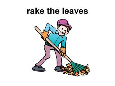 Man Raking Leaves