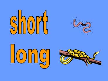 Short - Long