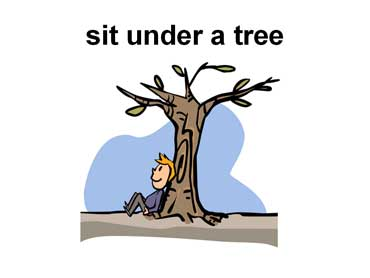 Boy Sitting Under a Tree