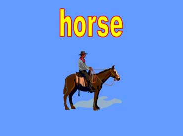 Cowboy Riding a Horse and Wearing a Cowboy Hat