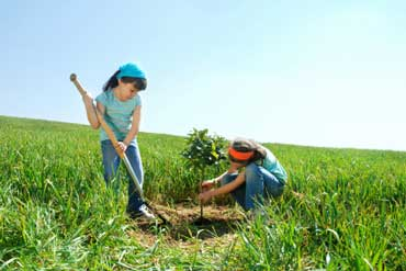 Children Planting a Tree for Arbor Day
