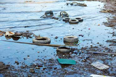 Water Pollution Along the Shore