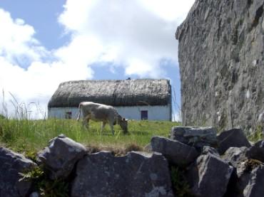 Farm House in Ireland