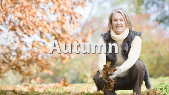 Autumn Lesson Banner