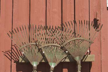 Rakes Leaning Against a Wall