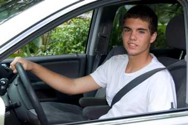 Driver Wearing a Seatbelt