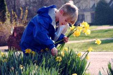 Son Picking Flowers for Mother's Day