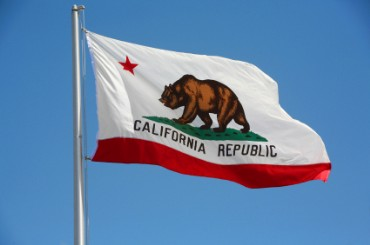 California Flag Known as the Bear Flag