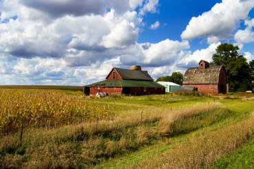 Barns in Iowa
