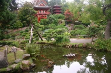 Anese Tea Garden